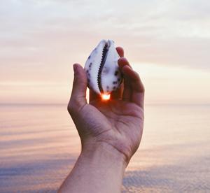 meditation-treacy-oconnor